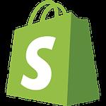 shopify web development services